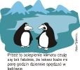 Humor 01.2010_18
